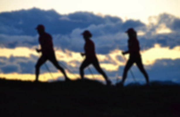 Nordic Walking Pro Desenzano
