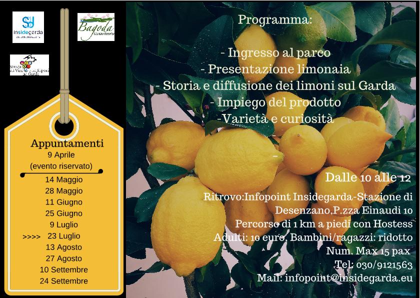 volantino-limonaia-bagoda1